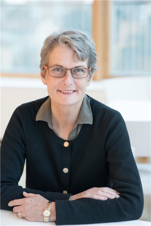 Högstbjudande får en energikonsultation av WSPs energiexpert Agneta Persson. Pengarna går till Muskhjälpen. Foto WSP